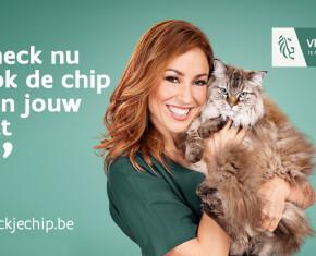 Check je chip