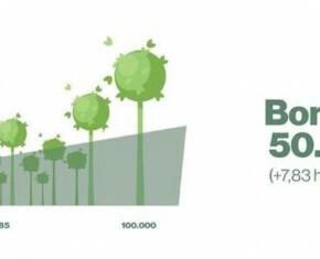 bomenteller op 50.385 nieuw aangeplante bomen